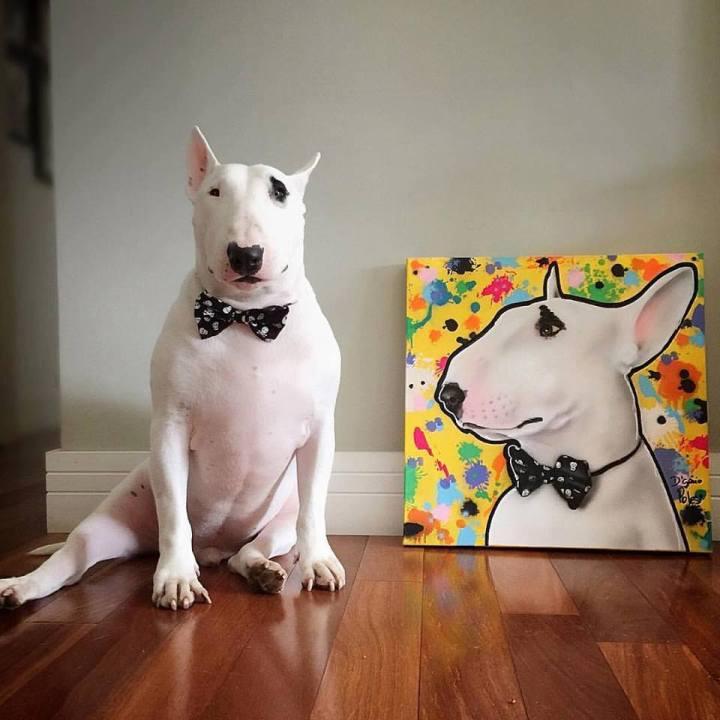 pet-art-crew