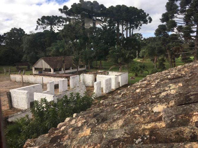 Infinitos Campos Gerais